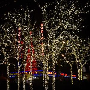 Bright (xmas) lights, big city  (NYC 2014)